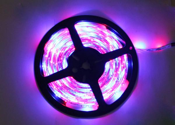 Flexible 12v 5m rgb led strip lights color changing for home aloadofball Gallery